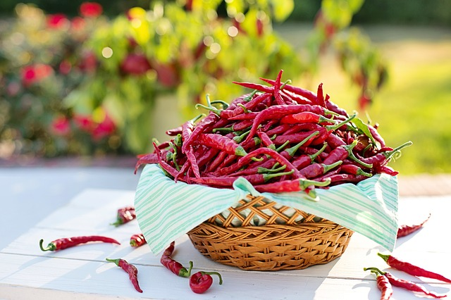5 Surprising Health Benefits Of Eating Chilli!